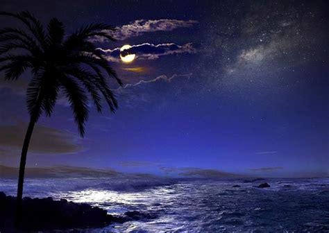 starry night  varkala beach audio atmosphere