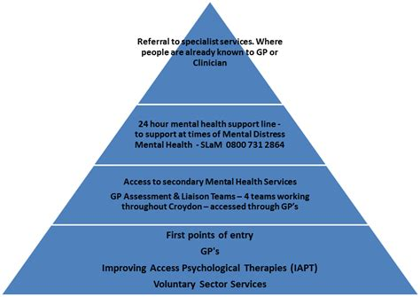 Mental Health Care Services
