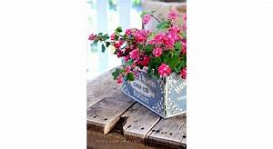 Jardiniere Pas Chere : jardini re jardini re pour balcon maison travaux ~ Melissatoandfro.com Idées de Décoration