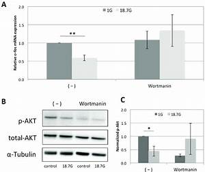 Involvement of PI3K signaling pathway in the down ...