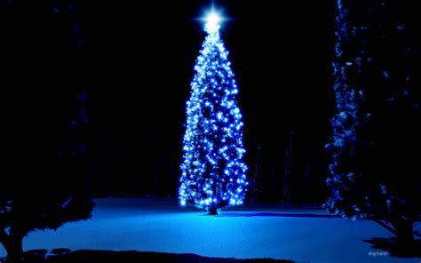 christmas tree hd wallpapers free christmas tree hd