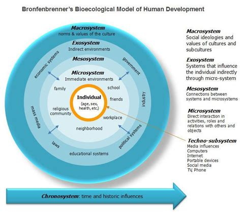 Bronfenbrenner Theory Essay by Ecological Systems Theory Social Work Social Work