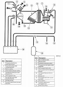Diagram  1988 F150 Vacuum Diagram Full Version Hd Quality