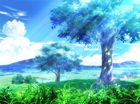 hd anime trees backgrounds wallpaper hd latest wallpapers