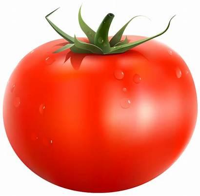 Tomato Clipart Vegetables Yopriceville Transparent