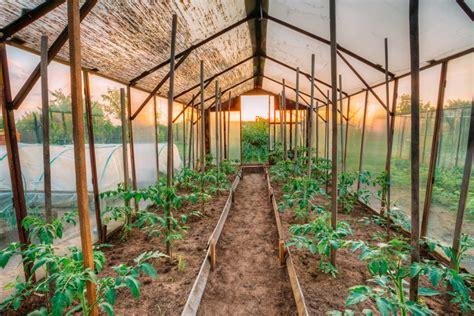 Tomaten-gewächshaus » Eine Bauanleitung