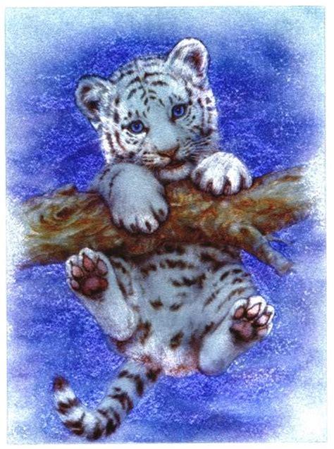 steffis bilder seite wildkatzen