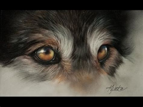 kay witt wolf eye demo  pastel  velour paper part