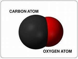What is the difference between carbon dioxide and carbon ...