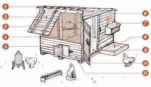 Plan Poulailler 5 Poules : construire un poulailler gallinette guide d 39 levage de ~ Premium-room.com Idées de Décoration