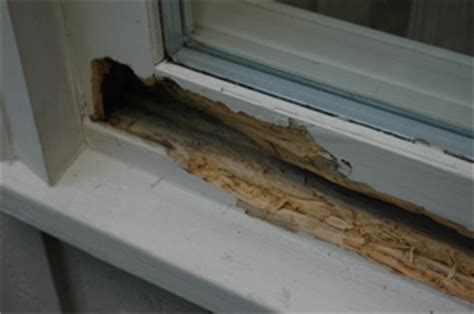 window sill protective coating company