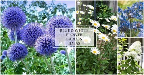blue white flower garden ideas on sutton place