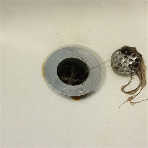 Unclogging Bathtub Drain Hair by How To Dissolve Hair In A Drain Without Harming The Pipes