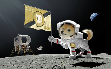 Dogecoin Sets a New Record and Surpasses the 50 Cent Mark