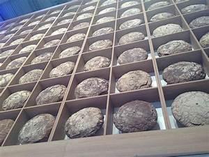 Brot Im Kühlschrank Aufbewahren : brot richtig aufbewahren profi tipps vom brotexperten ~ Watch28wear.com Haus und Dekorationen