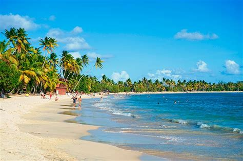 Cheap Flights to Martinique