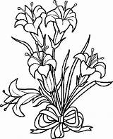 Lily Flower Coloring Pages Přečist Sheets sketch template