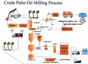 Kembara Insan    Engineer U0026 39 S Blog  Typical Palm Oil