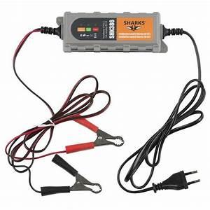 Charger Batterie Voiture : chargeur de batterie auto voiture universel intell achat vente chargeur de batterie chargeur ~ Medecine-chirurgie-esthetiques.com Avis de Voitures