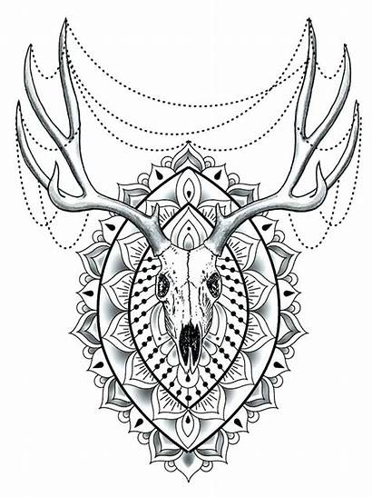 Coloring Mandala Pages Animals Adults Animal Difficult