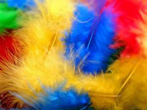 Vibrant Color Photography 18
