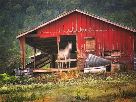 barn horse barns stables wendy mckennon horses fancy homes rich photograph woman terrible ramshackle 14th uploaded june which