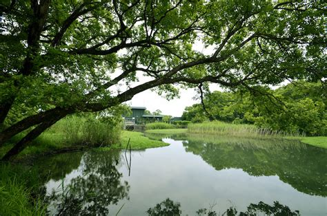 japans village  living water   ingenious method