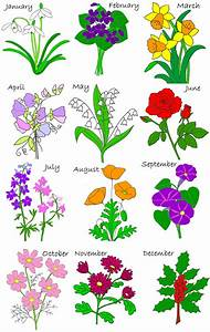 Birth Flower BOM | My Designs | Pinterest