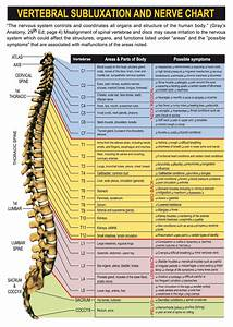 Chiropractic Body Charts Subluxation Carling Family Chiropractic And Sports