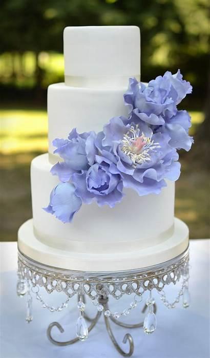 Cakes Shower Bridal Sugar Peonies Ruffles Cake