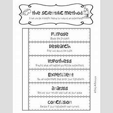 25+ Best Ideas About Scientific Method Foldable On Pinterest  Scientific Method Lesson