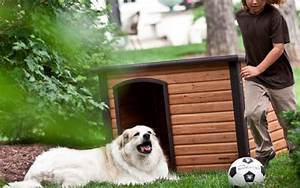 precision outback log cabin dog house 28 images With precision extreme outback log cabin dog house giant