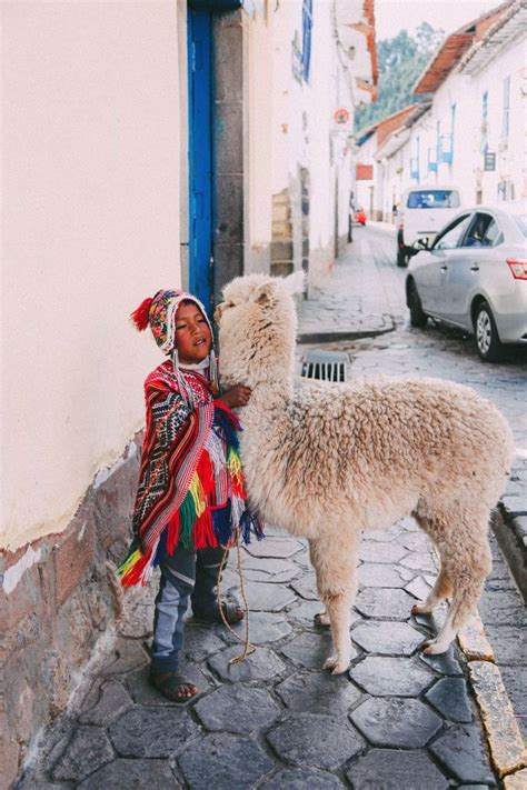 Best 81 Llamas And Alpacas In Peru Images On Pinterest