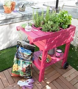 Mini Potager En Bois : en ville ou au jardin le kit pour cr er un mini potager ~ Premium-room.com Idées de Décoration