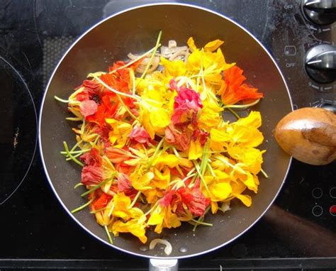 les fleurs comestibles en cuisine découvrez les fleurs en cuisine délicieux instants