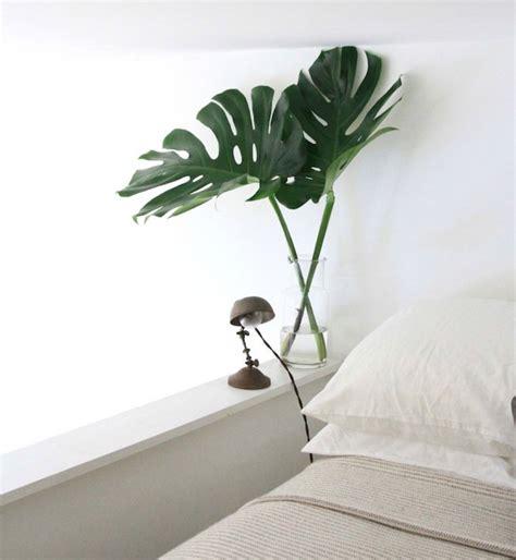 plante pour le bureau plante dépolluante offrez un bol d 39 air à votre intérieur