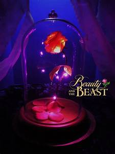 Beauty and the beast rose enchanted disney gift birthday ...