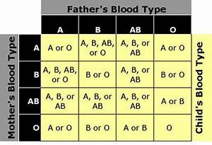 Positive And Negative Blood Type Chart Determine Blood Type From Parentage And Vice Versa It Is