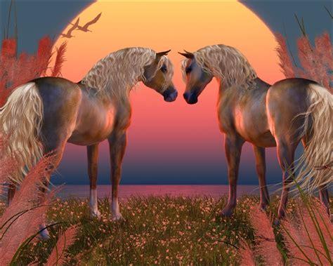 horse wallpaper  wallpapersafari