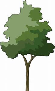 Free Trees Illustrations, Download Free Clip Art, Free ...