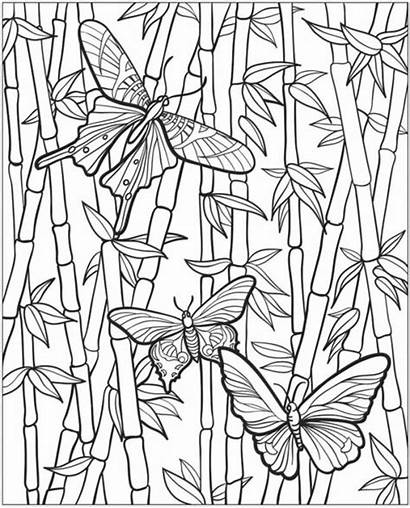 Pages Gardening Coloring Colouring Vegetable Vegetables Flower