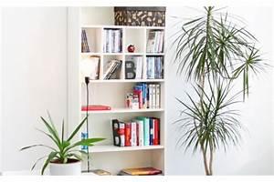 Dvd Regal Ikea : dvd einsatz f r billy regal von ikea billy regal pimps ~ Orissabook.com Haus und Dekorationen