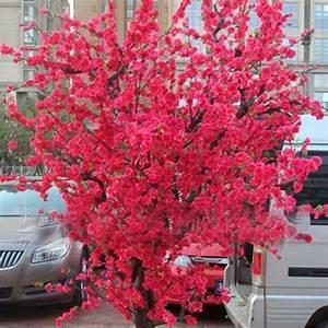 Sakura Baum Kaufen : online kaufen gro handel sakura bonsai baum aus china sakura bonsai baum gro h ndler ~ Frokenaadalensverden.com Haus und Dekorationen