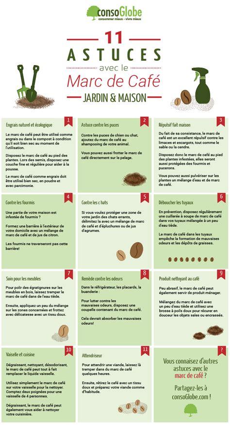 de fourmis dans la cuisine fiches pratiques 17 astuces pour tirer parti du marc de café