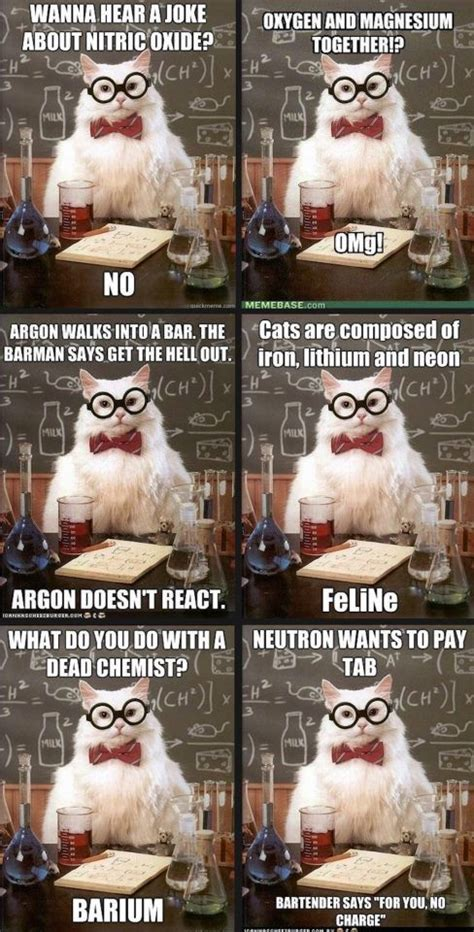 Science Birthday Meme - 25 best ideas about science memes on pinterest chemistry cat chemistry humor and funny