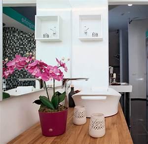 Décoration Feng Shui : feng shui home decorating ~ Dode.kayakingforconservation.com Idées de Décoration