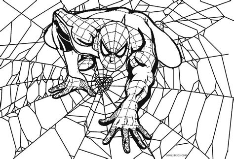 printable spider coloring pages  kids