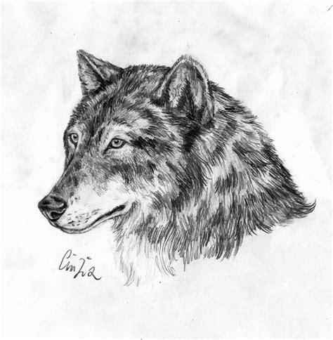 disegni da colorare bianco e nero disegni belli facili immagini di immagini disegni