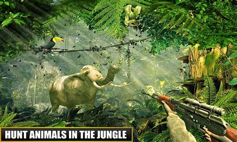 Free Forest Animal Real Hunting APK Download For Android