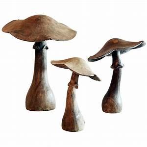64 best mushrooms images on Pinterest Fungi, Mushrooms